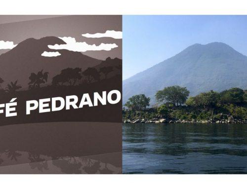 Café Pedrano: Die Ernte 2019 ist da!